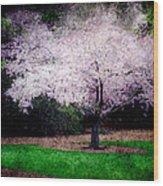 Ghostly Spring Wood Print by Bobbi Feasel