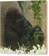 Gorilla Snacking Wood Print