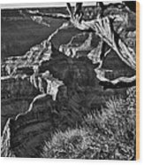 Grand Canyon Hermit View Wood Print