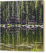 Granite Reflections  Wood Print
