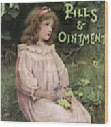 Holloway's Pills And Ointment Wood Print