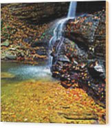 Holly River State Park Upper Falls Wood Print