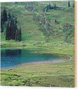 Image Lake Wood Print