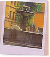 Italy San Spirito Wood Print by Lyn Vic