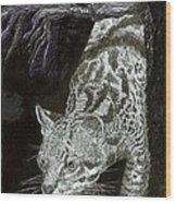 Jaguar Or Jacaranda  Wood Print
