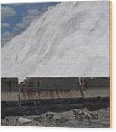 Jones Island Salt 1 Wood Print