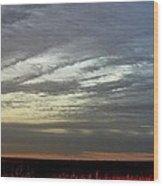 Kansas Prairie Grass Sunrise Wood Print