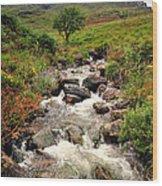 Kerry Mountains Wood Print