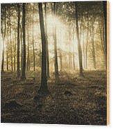 Kings Wood In Autumn Wood Print