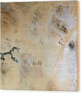 Koufra Oasis Libya Wood Print