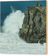Lady Of Mugu Rock 1  Wood Print