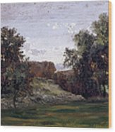 Landscape Near The Monastery Piedra. Aragon Wood Print