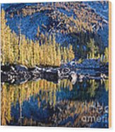 Larch Tree Reflection In Leprechaun Lake Wood Print