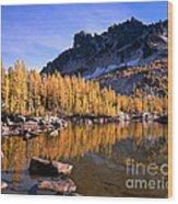 Larches Line Leprechaun Lake Wood Print