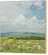 Large Blueberry Field With Mountains And Blue Sky In Maine Wood Print by Keith Webber Jr