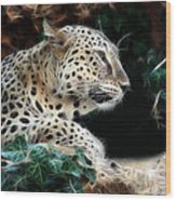 Leopard Watching It's Prey Wood Print