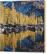 Leprechaun Lake Larches Wood Print