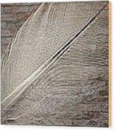 Light As A Brick Wood Print