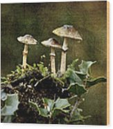 Little Mushrooms Wood Print