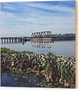 Little Washington Trestle Wood Print by Joan Meyland
