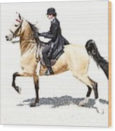 Lovely Gaited Buckskin  Wood Print