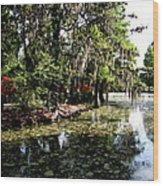 Magnolia Plantation Gardens Wood Print