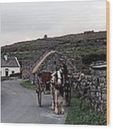 Making A Living On Inishmore - Aran Islands - Ireland Wood Print