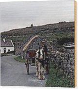 Making A Living On Inishmore - Aran Islands - Ireland Wood Print by Nina-Rosa Duddy