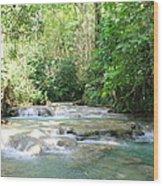Mayfield Falls Jamaica Wood Print