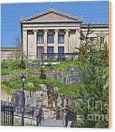 Museum Of Art Philadelphia Pa Wood Print by David Zanzinger