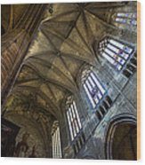Narbonne Cathedral Wood Print