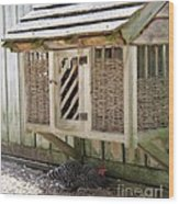 Old Fashioned Chicken Coop In Colonial Williamsburg Virginia Wood Print