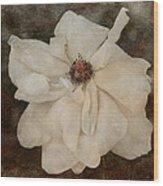 Perennial Gardens - Fall #02 Wood Print