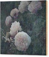 Perennial Gardens - Fall #04 Wood Print