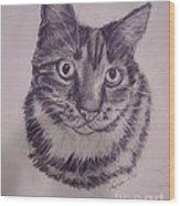 Pet Portraits  Wood Print