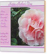 Pink Camellia - Happy Mother's Day Wood Print