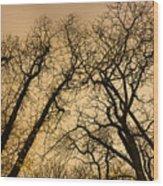 Quarrel Wood Print