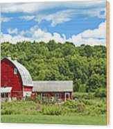 Red Farmstead In Summer Wood Print