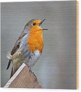 Robin Song Wood Print