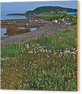 Rocky Harbour In Gros Morne Np-nl Wood Print