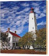 Sandy Hook Light Wood Print