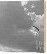 Seagulls Mb043bw Wood Print