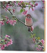 Singing In The Rain  2   Wood Print