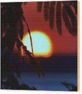 Sun Fusion Wood Print