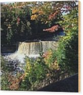 Tahquamenon Falls In Autumn Wood Print