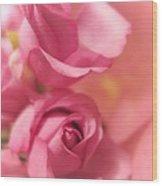 Tenderness Pink Roses 1 Wood Print