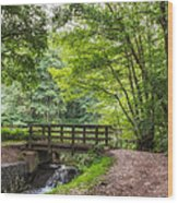 The Bridge Birches Valley Cannock Chase Wood Print