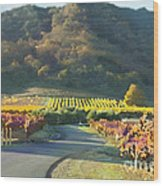 The Hills Of Clos La Chance Winery Wood Print