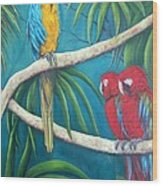 Three Is A Crowd,macaws Wood Print