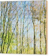 Tree Reflections Abstract Wood Print